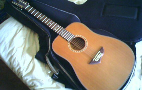 Best 12-String Acoustic Guitars under 1000