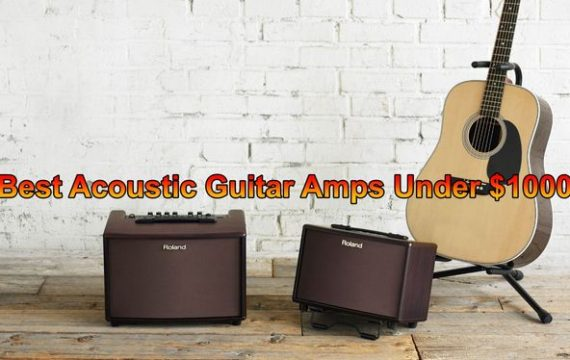 Best Acoustic Guitar Amps under 1000