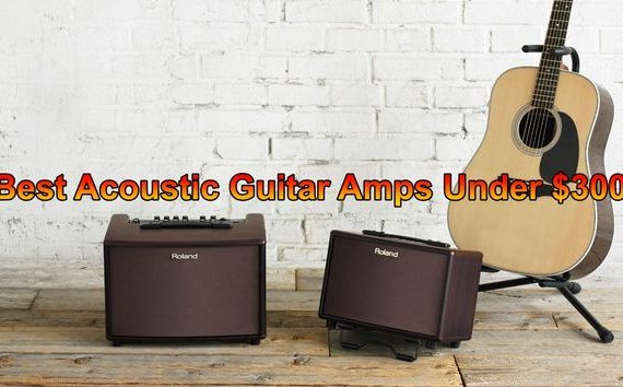 Best Acoustic Guitar Amps under 300